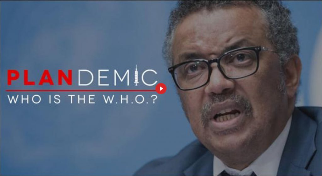 Plandemic II – WHO is the WHO? (EN►ES)