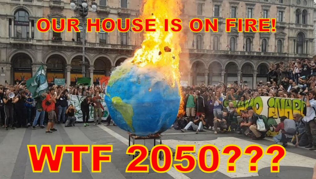WTF 2050??? Our house is on fire NOW! Global Strike III – Fridays For Future Milano