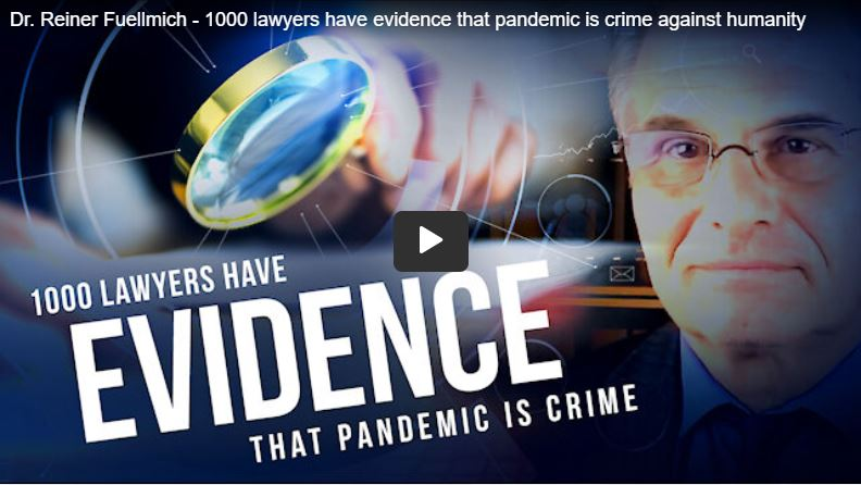 Dr. Reiner Fuellmich – global lawyers have evidence that pandemic is crime against humanity [EN]